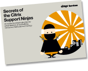 ninja-rightside-graphic